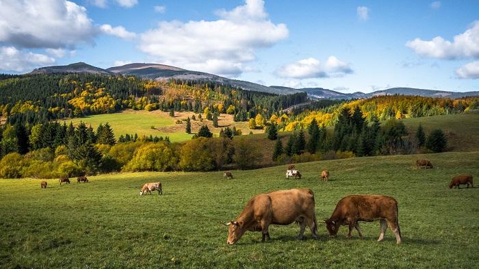 Zaujímavosti o Slovensku a jeho prírode