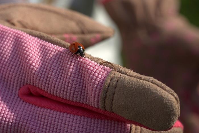 Pracovné rukavice z koženky